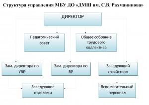 Структура ДМШ-1 - копия